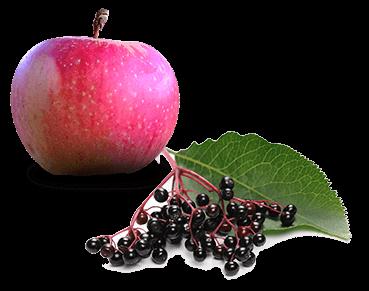 Apfel Holunder